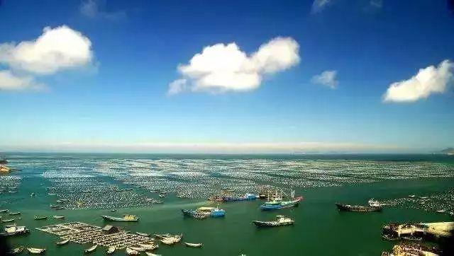 科学推进海洋牧场建设 促进近海渔业转型升级