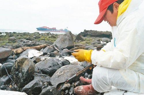 台货轮漏油染黑小螃蟹除污人员:看了心好痛
