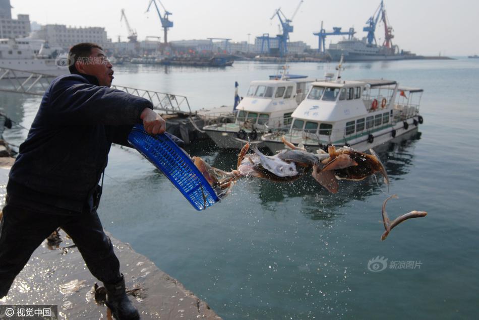 青岛码头放生海鱼 市民扎堆垂钓