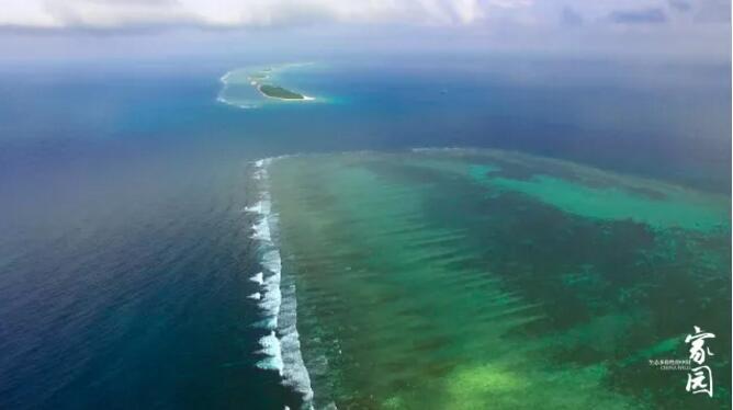 第一集《海洋》 | 大型自然類紀錄片《家園 生態多樣性的中國》