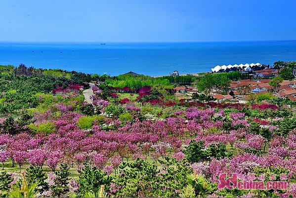 威海大乳山风景区:突出生态建设 打造一流景区