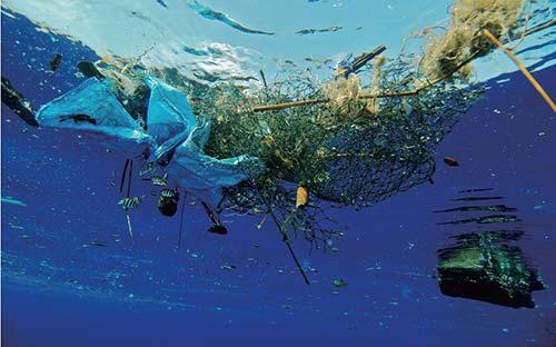 福州海岸清洁行动 清除近两吨海洋垃圾